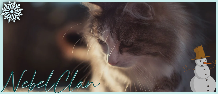 Warrior Cats Header18