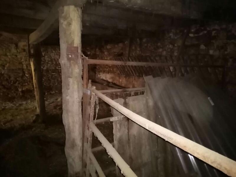 Un petit atelier pour le travail du bois, votre avis. Rps20210