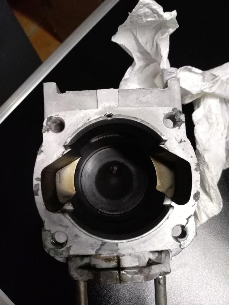 modifiche su decespugliatore lg motors 52 cc modello KM0408520TB - Pagina 2 Img_2027