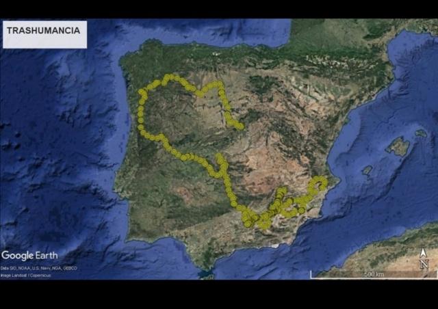 Quebra-ossos Gypaetus barbatus: primeiro registo em Portugal no século XXI? - Página 6 Screen12