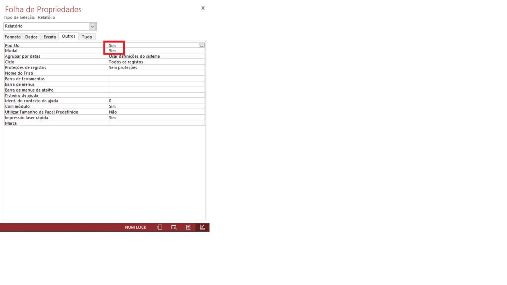 [Resolvido]Relatório abre atrás do formulário Sem_t157