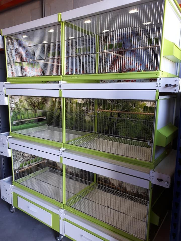 Bourse aux Oiseaux et Journée Portes Ouvertes ce Dimanche 2 Septembre de 7h00 à 18h00 39408910