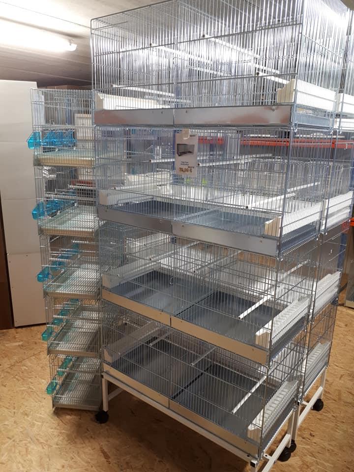 Bourse aux Oiseaux et Journée Portes Ouvertes ce Dimanche 2 Septembre de 7h00 à 18h00 39453910