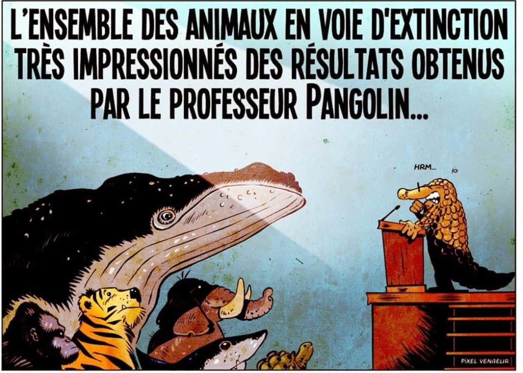 Humour sur le COVID19 - Page 2 20032010