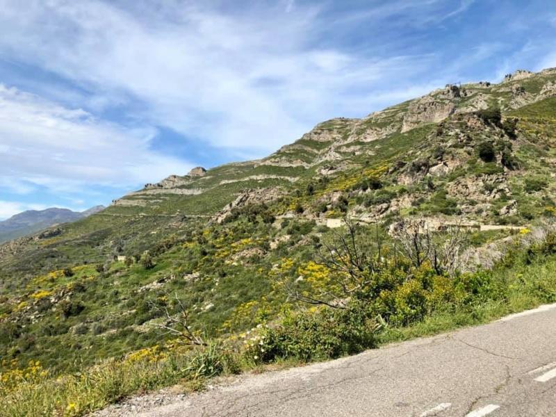 Mare e monti di Corsica 59932810