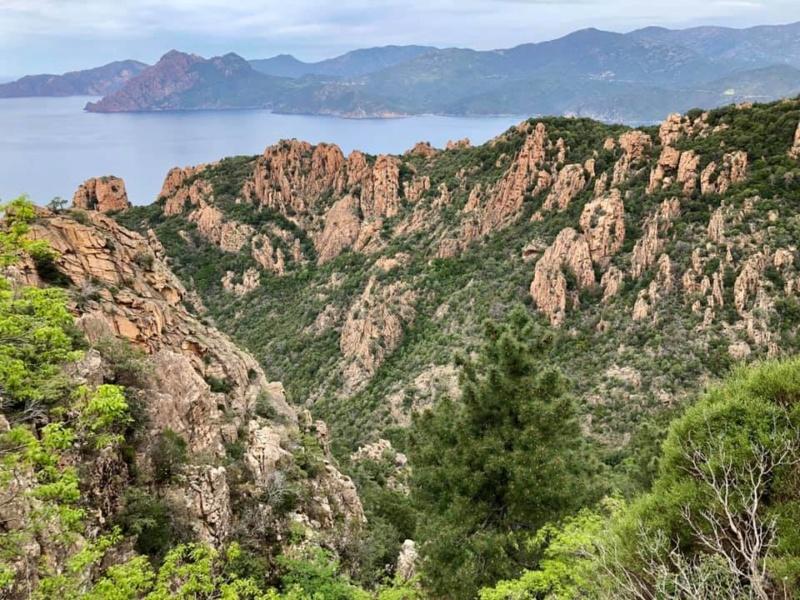 Mare e monti di Corsica 59999110