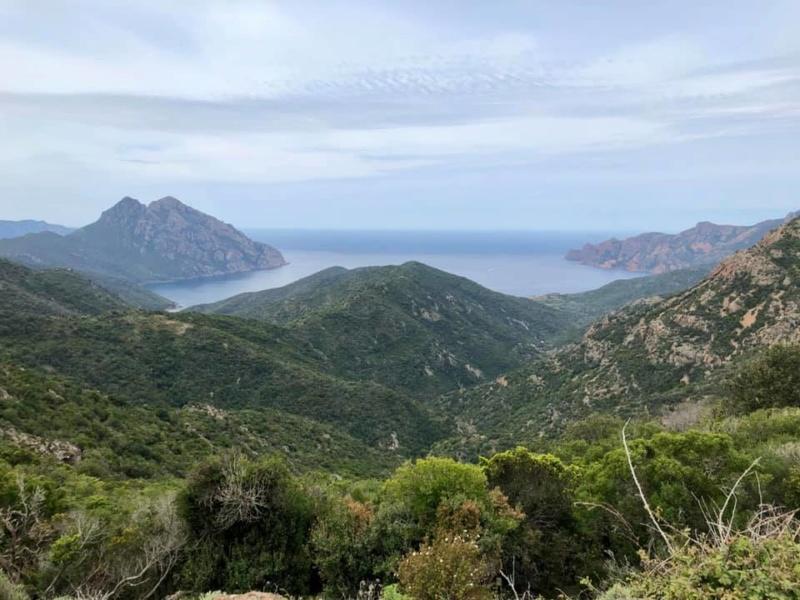 Mare e monti di Corsica 60024110
