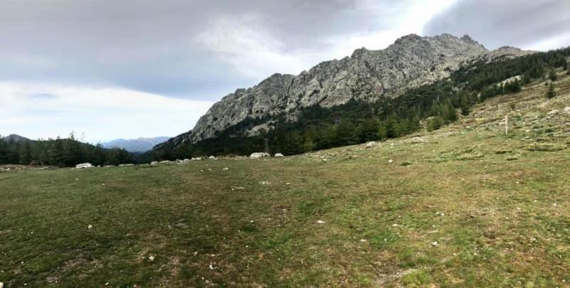Mare e monti di Corsica 60084610