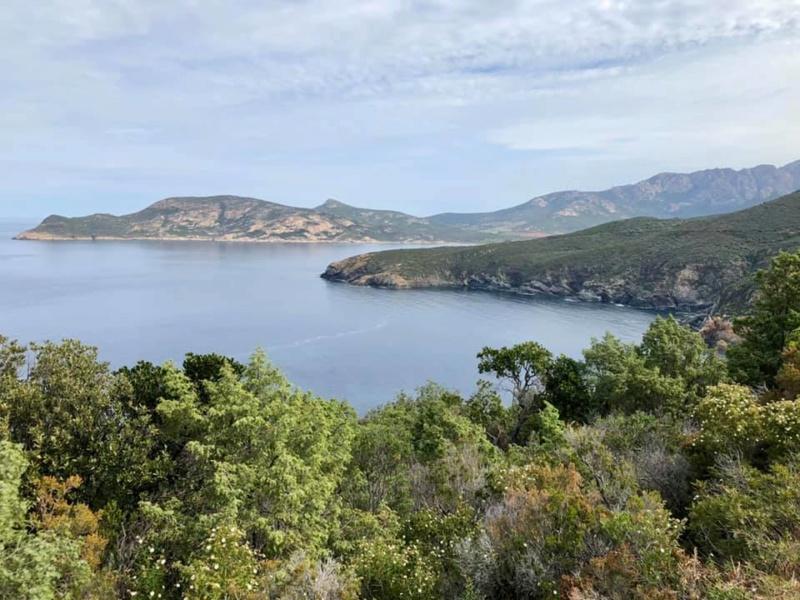 Mare e monti di Corsica 60121710