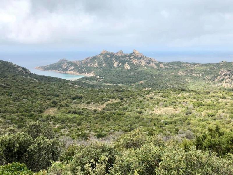 Mare e monti di Corsica 60176610
