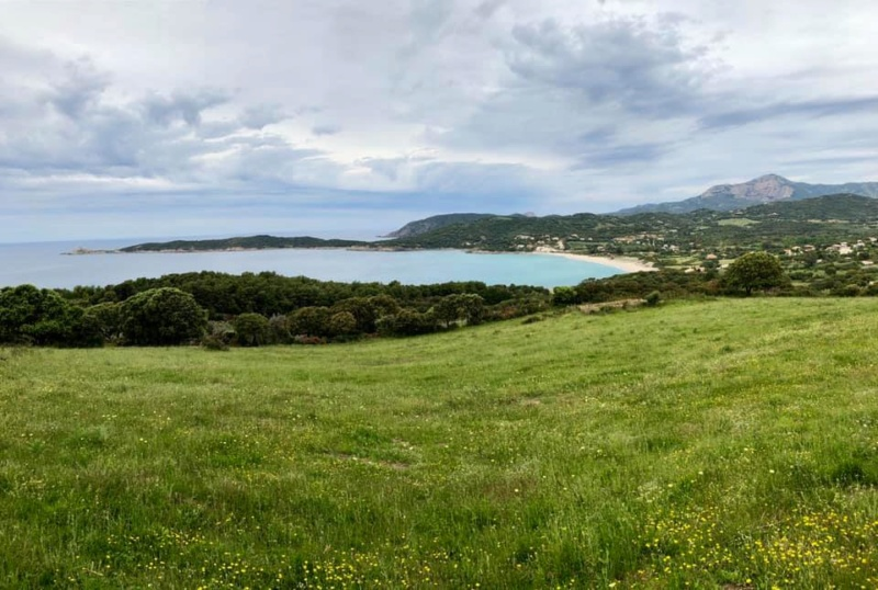 Mare e monti di Corsica 60355610