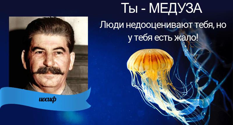 разнообразие образов И.В.Сталина и А.А. Гитлера в современной жизни Gen-v110