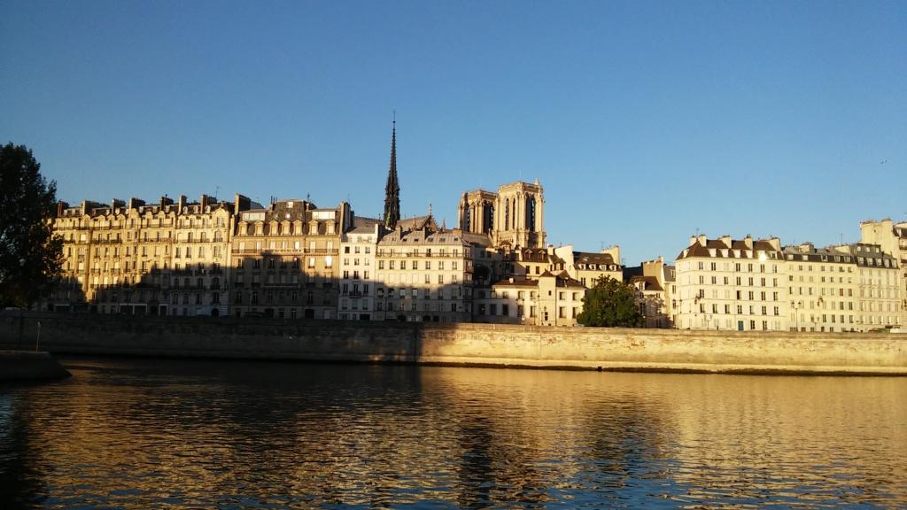 Terrible incendie de Notre Dame de Paris le 15 Avril 2019 au soir - Page 3 20180233