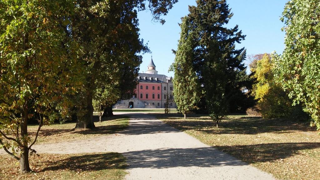 Château de Sychrov pour le cardinal Rohan et Victoire Armand, princesse de Guéménée le 14 octobre 2018 20181482