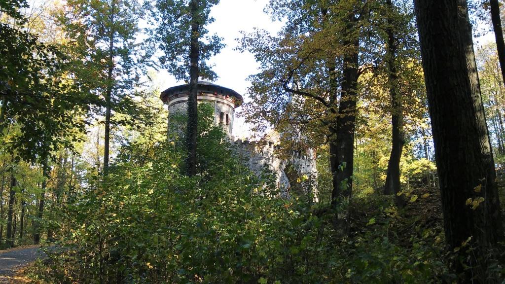 Château de Sychrov pour le cardinal Rohan et Victoire Armand, princesse de Guéménée le 14 octobre 2018 - Page 2 20181553
