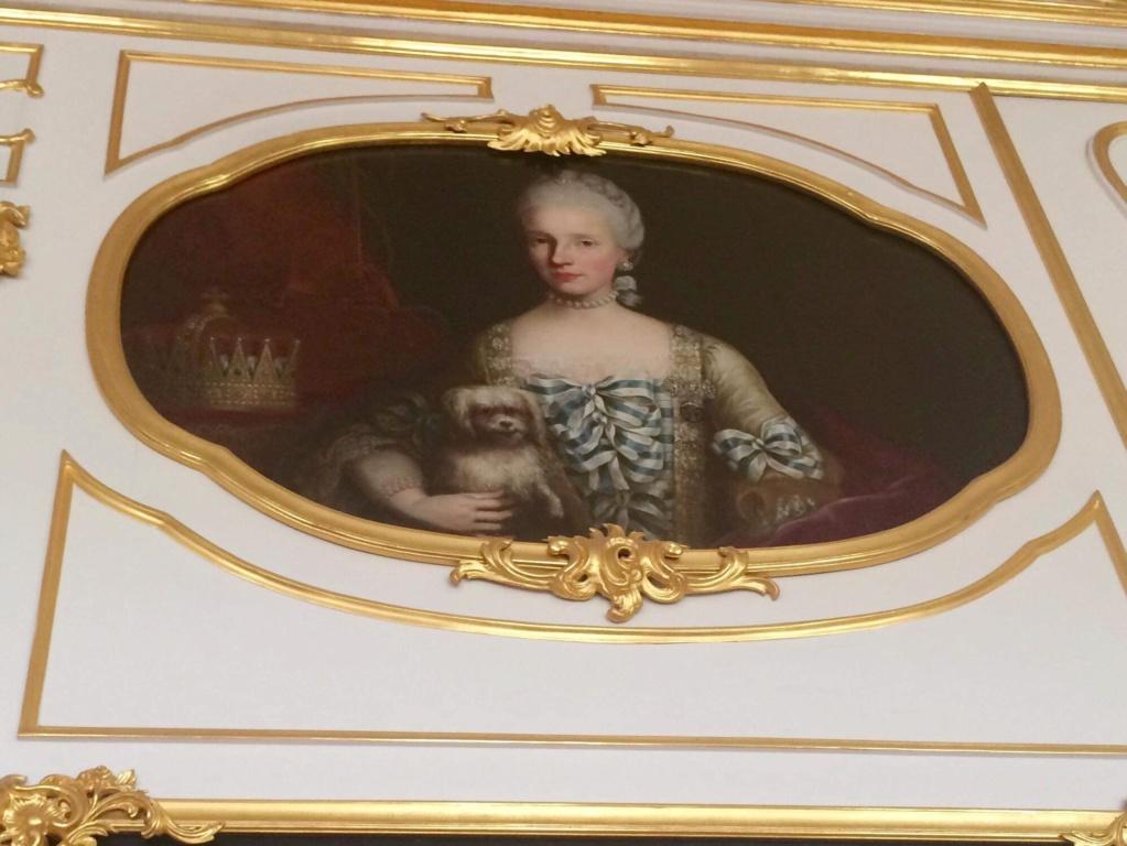 En visite à Prague pour l'impératrice Marie-Thérèse, l'empereur Joseph II, Marie-Thérèse Charlotte de France, le roi français Charles X et la famille française Rohan-Guémen,president France E. Macron. - Page 20 Img_1615