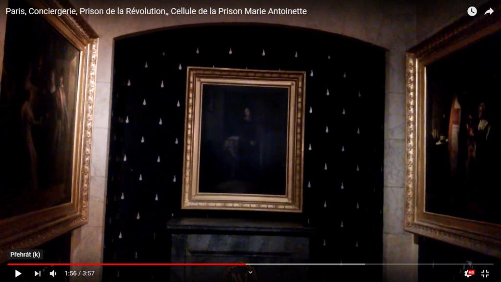 Vidéos de Paris, 25 juin 2019. Pepe-Marie Antoinette tour 2, Conciergerie, Place de la Concorde, Tuileries, reconstruction de la cathédrale Notre-Dame Snzym401