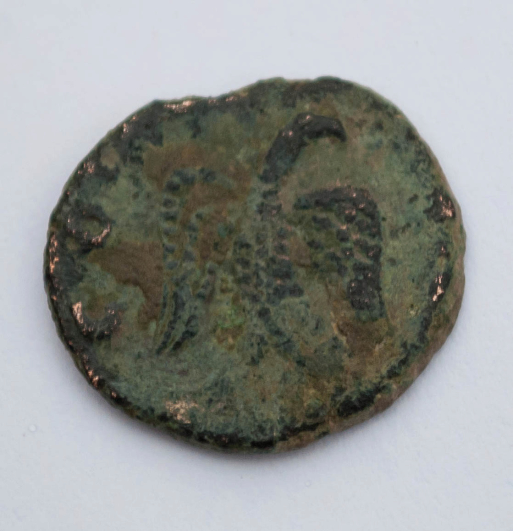 Radiado póstumo de Claudio II. CONSECRATIO. Águila  Dsc_0014