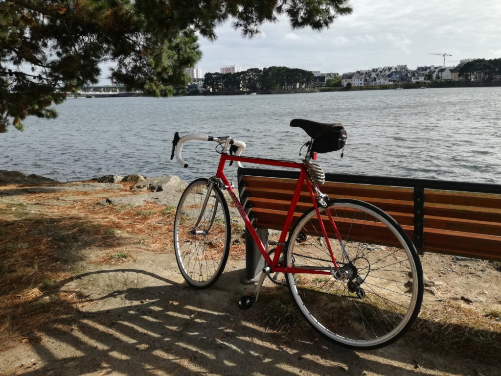 Cherche modèle de vélo - Marque Marcarini Img_2012