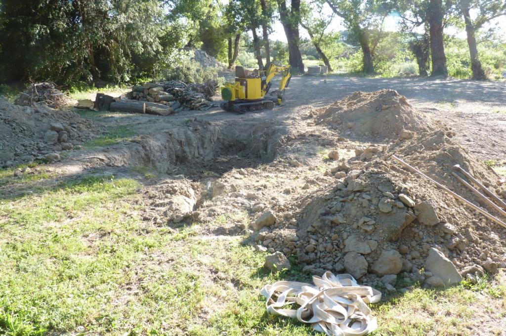 Travaux pratiques: déterrage d'un acacia Wood_115