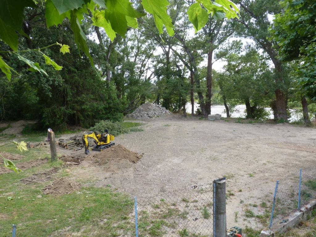 Travaux pratiques: déterrage d'un acacia Wood_610