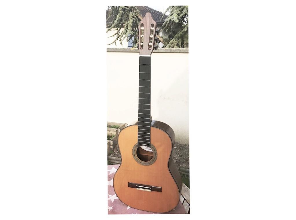 Les guitares de Nic77 - Page 2 B203b910