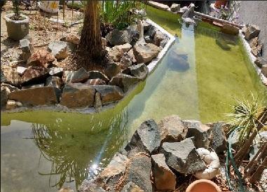 Construção Lago Ornamental 410