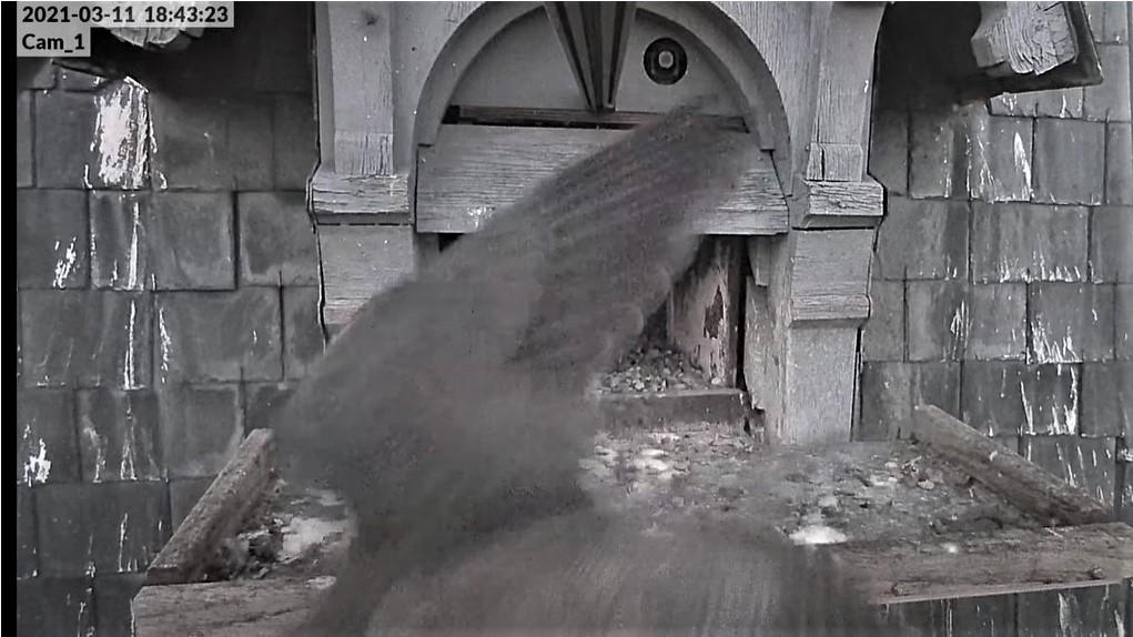 Les faucons pèlerins d'Illkirch-Graffenstaden. Lucky en Valentine. - Pagina 5 1843_v10