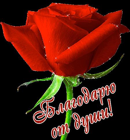 ПОСЛАНИЯ АНГЕЛОВ для Вас лично - Страница 21 8e510910