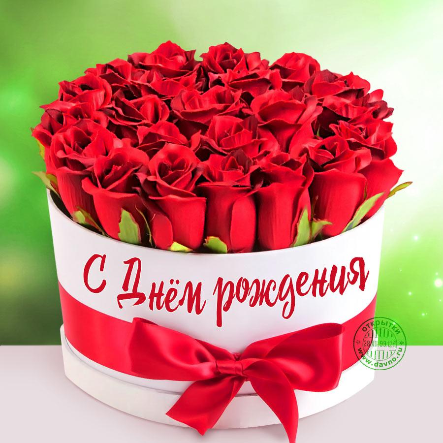 С Днем Рождения!  Img-4d10