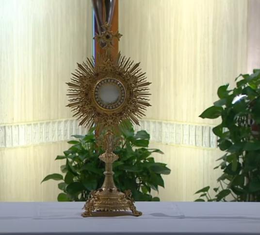 Messe quotidienne avec le pape François tous les jours en direct - Page 2 Aaaaaa30