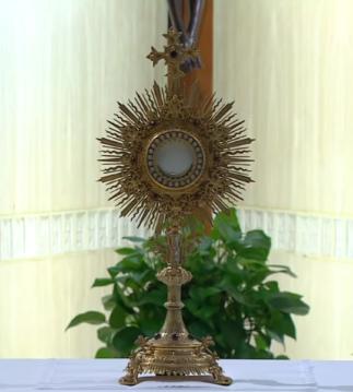 Messe quotidienne avec le pape François tous les jours en direct - Page 2 Aaaaaa87