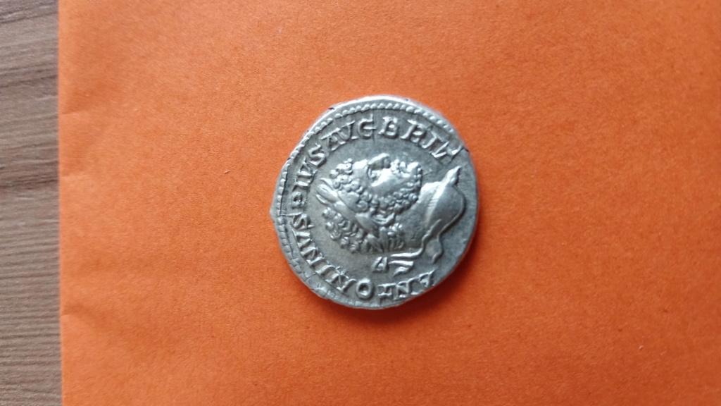 Denario de Caracalla. PM TR P XVI COS IIII PP. Hércules a izq. Roma Photo_49