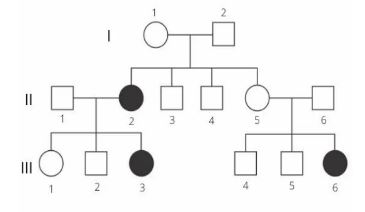 Genética Captur10