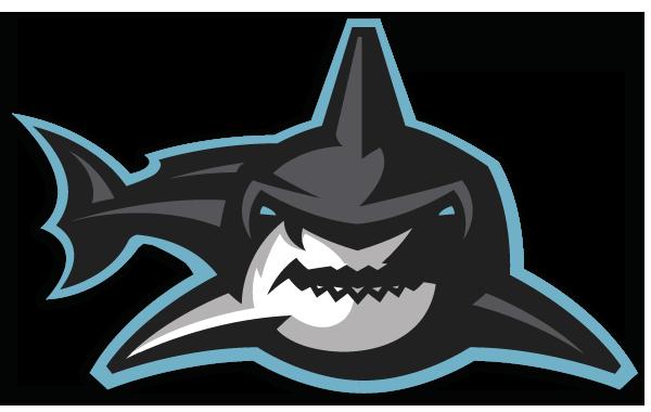 Tampa Bay Sharks Team Information 7d9a8010