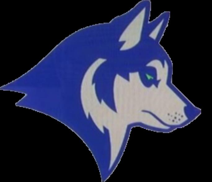 Seattle Huskies Seattl11