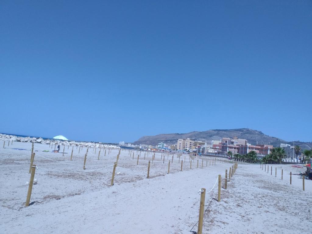 Saluti dalla Sicilia  20200810