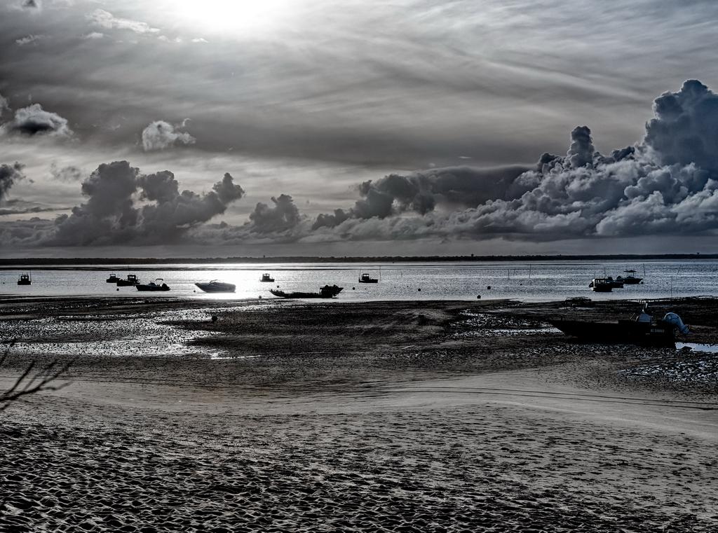 Levé de Soleil - Vite les cannes à pêche Hd110