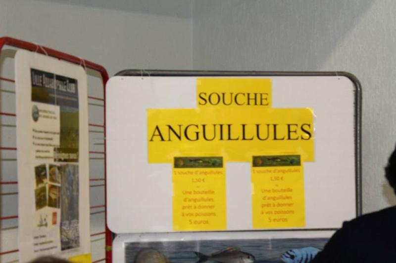 Bourse de villers bretonneux (80)-5eme edition -  Photo_13