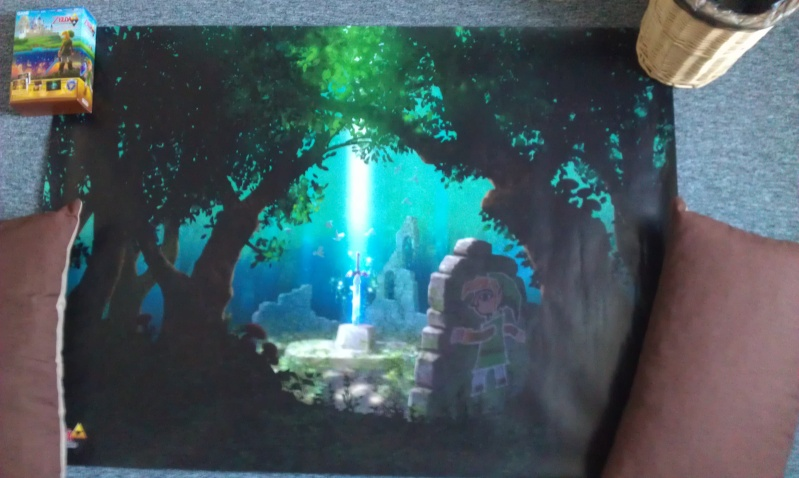 The legend of zelda between worlds collector edition - Page 3 Imag0010