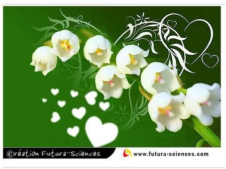 Des bouquets de muguets  38465_10