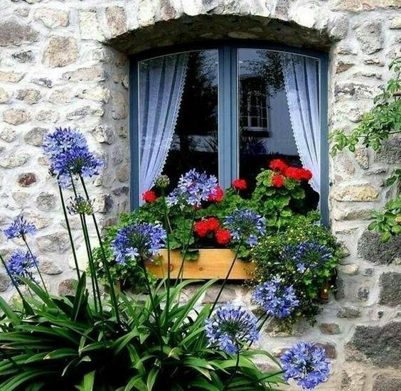 Photos de printemps/été - Page 14 45d71511