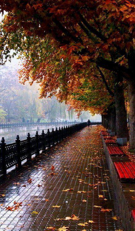 Images d'automne  - Page 7 611f8a10
