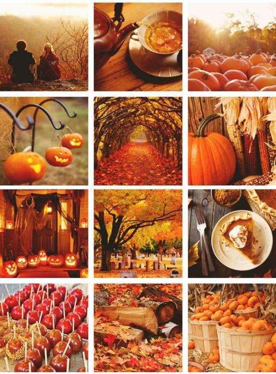 Images d'automne  - Page 3 6ef70a10
