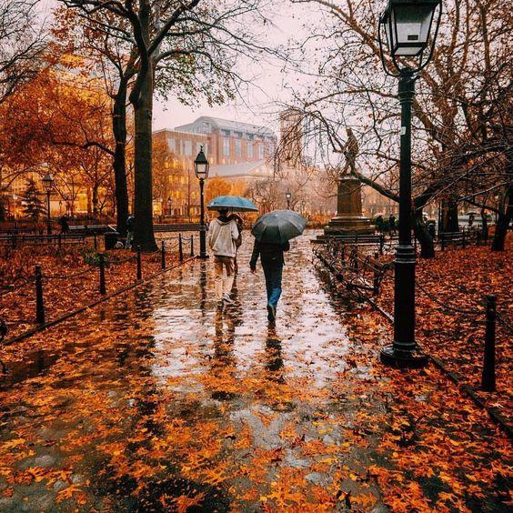 Images d'automne  - Page 3 95629510