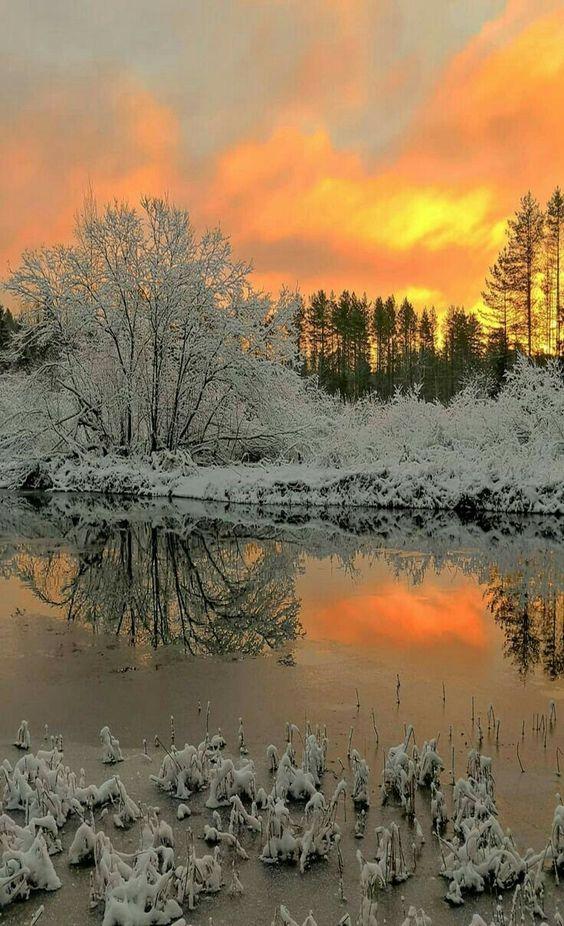 Images d'hiver - Page 3 Dc7ff510