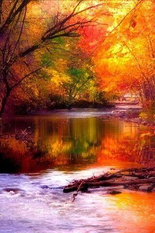 Images d'automne  - Page 2 E30f5c10