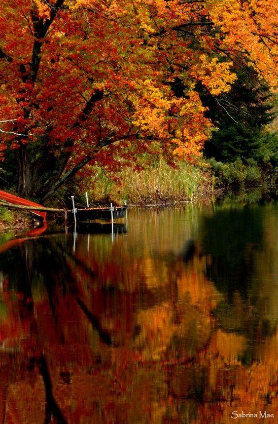 Images d'automne  - Page 7 F22fe910