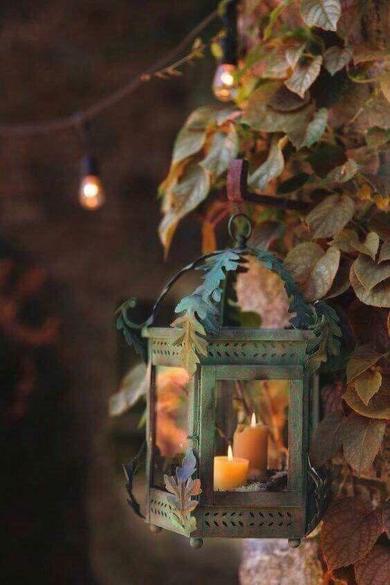 Images d'automne  - Page 5 F8667d11