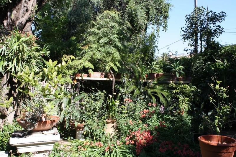 Ma nouvelle poutre aux succulentes Fond_d10
